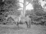 Gisborne (New Zealand), Gardner Clapp on horse