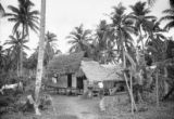 Guam, man outside home surrounded by palm trees