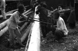 Chongqing (China), laborers sawing a wood log