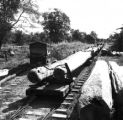 Chiang Rai province (Thailand), logs being hauled by railroad
