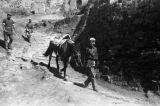 Yanan (China), boy walking down path with horse
