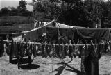 China, clothes and fish hanging to dry