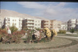 Damascus (Syria), garden in the middle of residential buildings