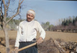 Syria, farmer working in a field