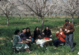 Syria, picnic in Ghouta, a rural area outside Damascus
