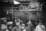 China, people standing in store selling birdcages