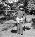 Chiang Mai (Thailand), man holding baskets with lac broken off sticks and ready to be dried