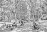 Malaysia, soldiers resting in jungle during the Malayan Emergency