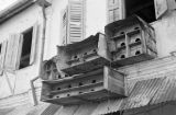 Singapore, pigeon and birdhouses built on exterior of building