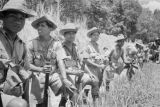 Malaysia, soldiers waiting by roadside during Malayan Emergency