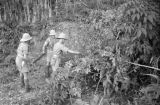 Malaysia, soldiers with field cannon covered by thicket