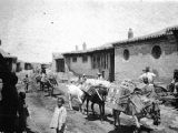 Dongxiaocun (China), mule-train passing through village