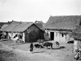 Wuhan (China), thatched-roof homes of fire refugees