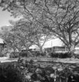 Philippines, faculty houses at Silliman University in Dumaguete