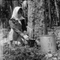 Malaysia, woman collecting latex from rubber tree