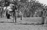 Pakistan, man carrying buckets with yoke