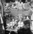 Pakistan, men with cages of chickens in Karāchi