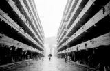 Hong Kong, woman with umbrella walking through Shek Kip Mei Estate public housing