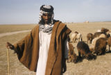 Iraq, portrait of shepherd with flock in background