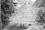 Philippines, hut at rice plantation of Cordillera Central Mountains in Banaue