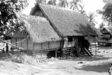 Indonesia, thatched roof home in Mataloko village