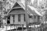 Indonesia, thatched roof home on stilts in Banjarmasin