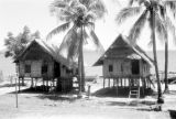 Indonesia, thatched roof homes on stilts in Banjarmasin
