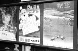 Japan, Christmas-themed advertisements posted in Tokyo