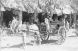 Kandahar (Afghanistan), horse drawn wagon on city street