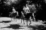 Indonesia, man and woman traveling on horseback on Sumbawa Island