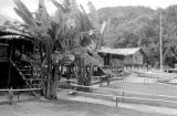 Malaysia, stilt homes at village in Pehang