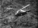 Malaysia, British Royal Navy helicopter flying above jungle