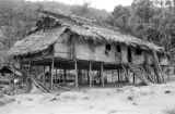 Malaysia, stilt home at Semang village outside Fort Dixon