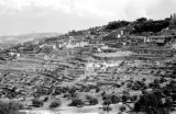 Israel, terraced hills of Jerusalem