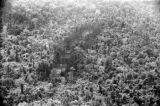 Malaysia, aerial view of bombed area in jungle forest