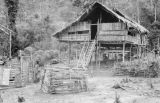 Malaysia, Stilt home in Semang village outside Fort Dixon