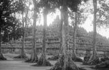 Indonesia, view of Borobudur Temple Complex through trees in Borobudur