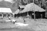 Malaysia,  people rolling rugs on grass outside thatched-roof building