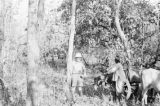 India, Clarence Sorensen holding foot of leopard in forest
