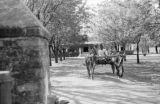 India, man driving oxen cart on road from modern structure in Amalner