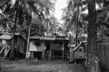 Philippines, stilt house on forest in Kolambugan