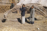 Basra (Iraq), two boys carrying bundle of dried palm branches