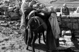 Israel, women loading bags of water on donkey