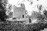 Israel, man and donkey outside ruins of watchtower in Bethlehem