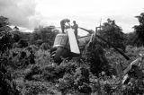 Malaysia, soldiers fixing crashed British Royal Navy helicopter in jungle