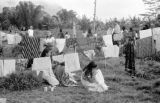 Indonesia, Ruteng village girls hanging laundry