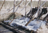 Az-Zubayr (Iraq), closeup view of well apparatus for irrigation system