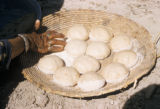 Iraq, hand patting rolls of dough in flat basket