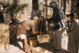Iraq, men weighing boxes of dates