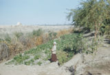 Baquba (Iraq), man standing in small outdoor garden